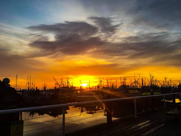 Sunset in a harbour full of boats